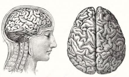 Cum putem încetini îmbătrânirea creierului – Neurolog D. Mureşan