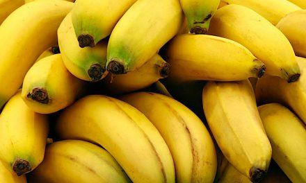 O ieșeancă a petrecut o lună pe plantațiile de banane din Ecuador