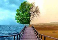 Reciclarea poate salva vieţi! Living eco-friendly